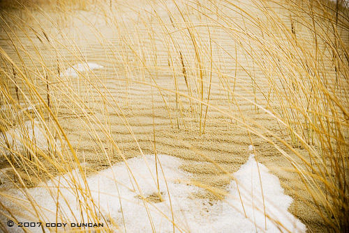 © cody duncan photography.  frozen sand dune on Curonian Spit, lithuania
