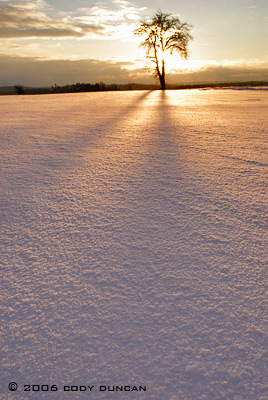 © cody duncan photography. sunset in winter snow, Germany