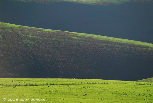 © Cody Duncan photography.  Green rolling hills of sheep pasture, wales
