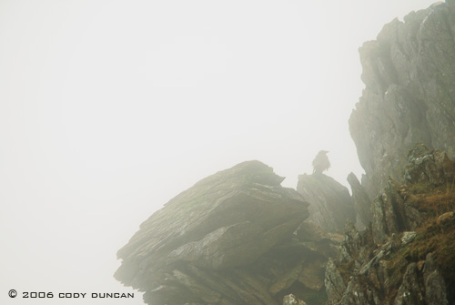 © Cody Duncan photography.  Foggy rocks in Snowdonia