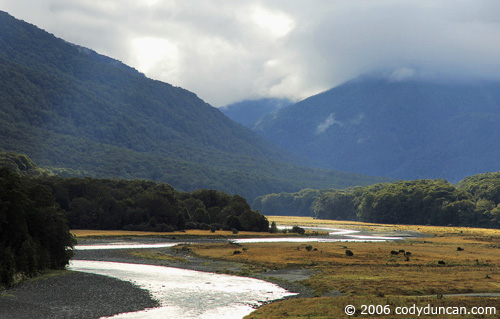 morning light over river in Haast pass, New Zealand.  © Cody Duncan Photography