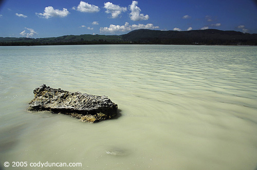 New Zealand Landscape photo: lake Rotorua.  © Cody Duncan Photography