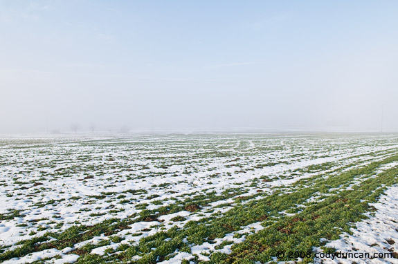 Cody Duncan travel photography: snowy farm field in Auerbach, Germany. © 2008 Cody Duncan Photography
