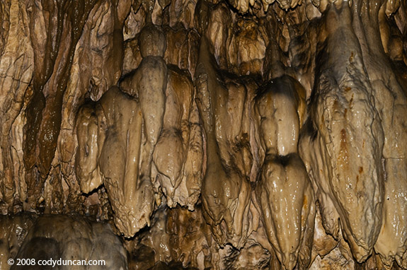 Germany caving photo: Limestone cave, Franconia, Germany.  Cody Duncan Photography