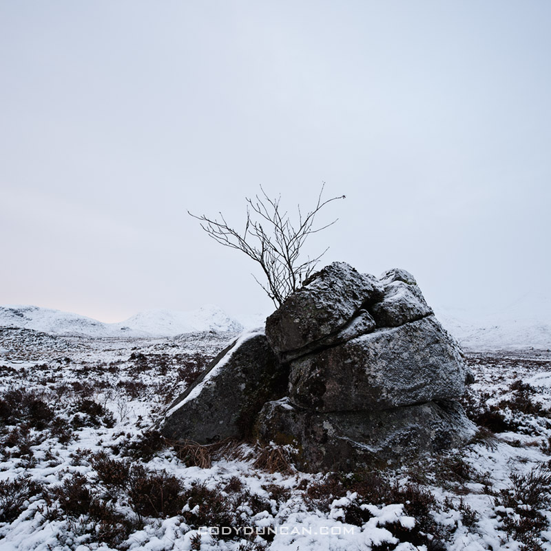 Rannoch Moor winter