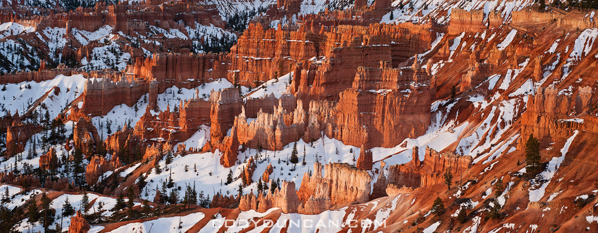 Bryce Canyon Hoodos and snow