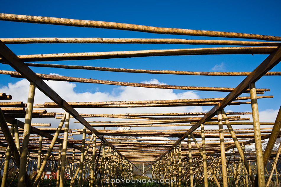 Empty stockfish drying rack, Lofoten islands, Norway