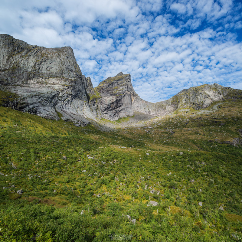 Green summer birch trees below dramatic mountain peaks, Moskenesoy, Lofoten Islands, Norway