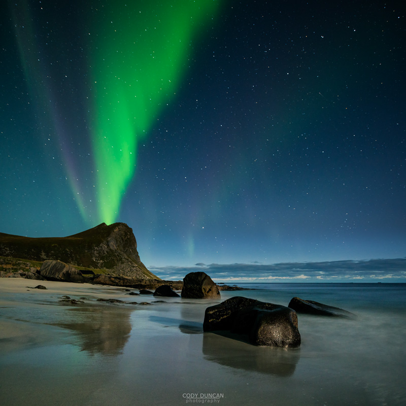 Northern Lights fill sky over Myrland beach, Flakstadoy, Lofoten Islands, Norway
