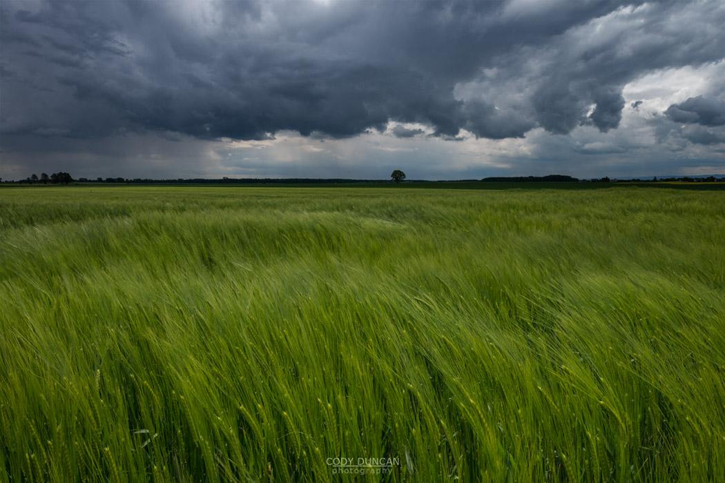 Spring storm over farm field, Opole voivodship, Silesia, Poland