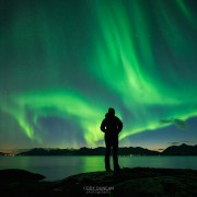 Silhouette of person watching Northern Lights - Aurora Borealis over coastline, Austvågøy, Lofoten Islands, Norway