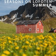 Seasons On Lofoten: Summer