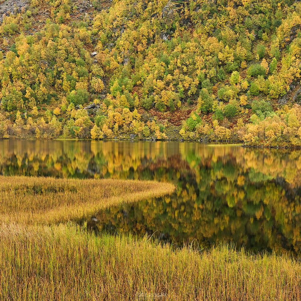 Lofoten Islands, Autumn Photo tour